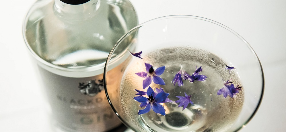 Sussex Gin Week Title Sussex Magazine www.titlesussex.co.uk