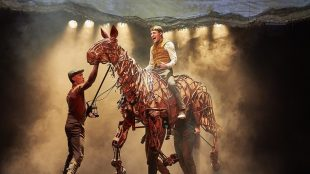 Warhorse review Title Sussex Magazine www.titlesussex.co.uk