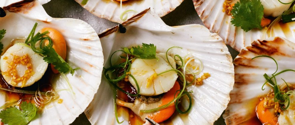 Steamed scallops in the shell with ginger Title Sussex Magazine www.titlesussex.co.uk
