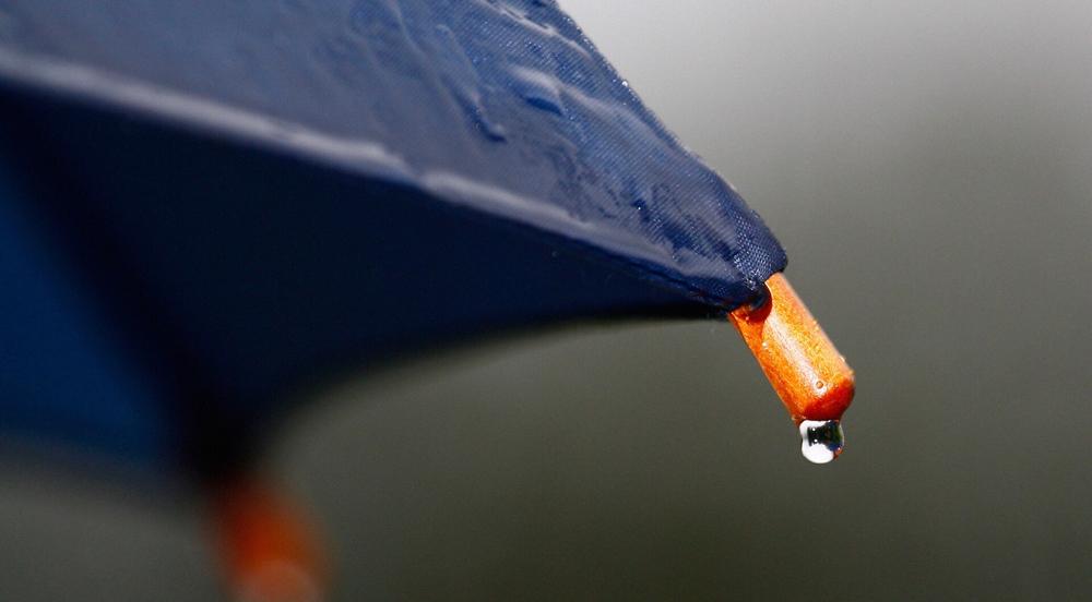 mild rain in california title sussex magazine www.titlesussex.co.uk