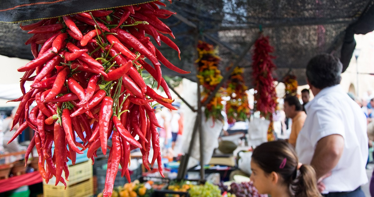 Chilli Fiesta 2019 Summer Festivals on Title Sussex Magazine www.titlesussex.co.uk